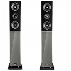 Напольная акустика Audio Physic CLASSIC 30 Glass Grey Brown (RAL1250) high gloss